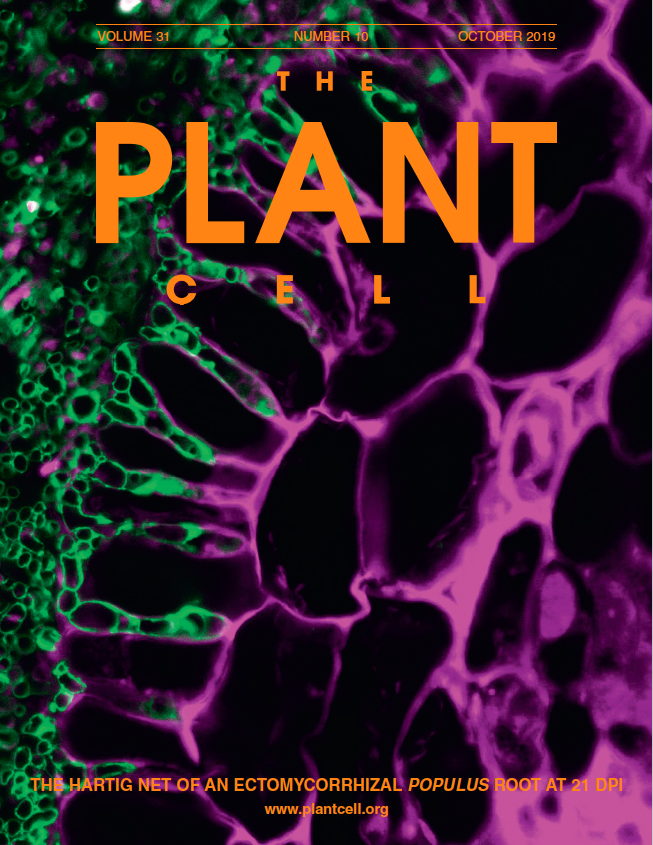 Cover of The Plant Cell